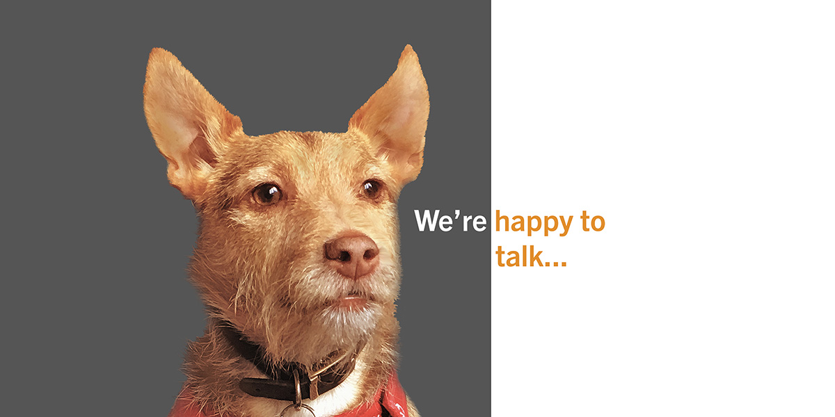 Dog with we're happy to talk tagline